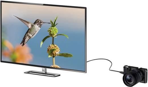 SpeaKa Professional HDMI Anschlusskabel [1x HDMI-Stecker - 1x HDMI-Stecker C Mini] 0.45 m Schwarz