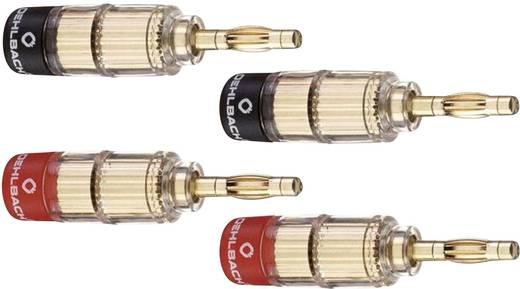 Lautsprecher-Steckverbinder Stecker, gerade Gold, Rot, Schwarz Oehlbach 3020 4 St.