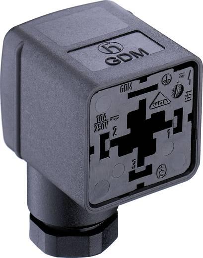 Ventilstecker GDM2106 Schwarz GDM2106 Pole:2 + PE Belden Inhalt: 1 St.