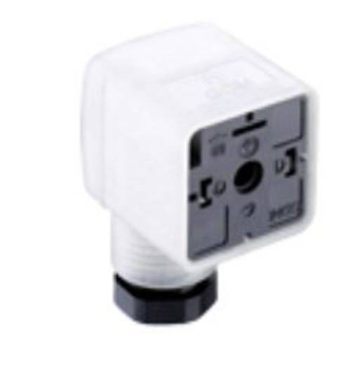 Ventilstecker GDM21F6-D24 Transparent GDM21F6-D24 Pole:2 + PE Belden Inhalt: 1 St.