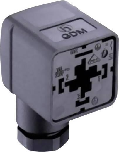 Ventilstecker GDM21FA-L1Y Transparent GDM21FA-L1Y Pole:2 + PE Belden Inhalt: 1 St.
