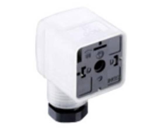 Ventilstecker GDM21F6-L14 Transparent GDM21F6-L14 Pole:2 + PE Belden Inhalt: 1 St.