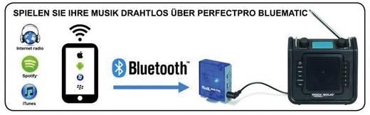 DAB+ Baustellenradio PerfectPro Rockbull AUX, DAB+, UKW spritzwassergeschützt, staubdicht Schwarz