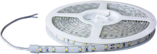 LED-Streifen mit offenem Kabelende 24 V 100 cm Kalt-Weiß Barthelme 51618415 51618415