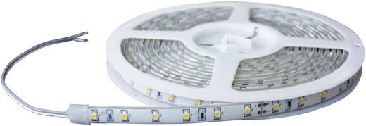 LED-Streifen mit offenem Kabelende 24 V 500 cm Rot Barthelme 51658411 51658411