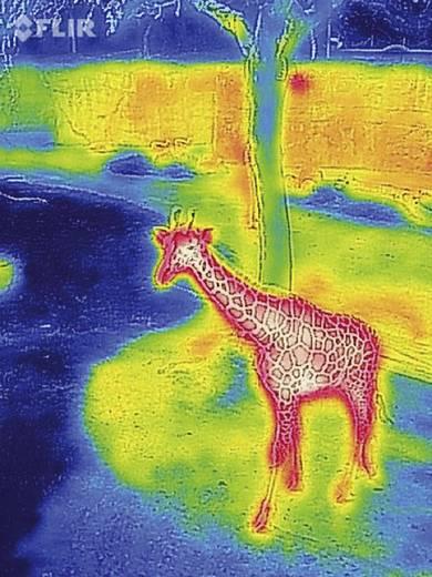 Wärmebildkamera FLIR
