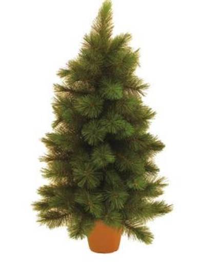 Weihnachtsbaum Tanne 90 cm Europalms 83500139 Grün