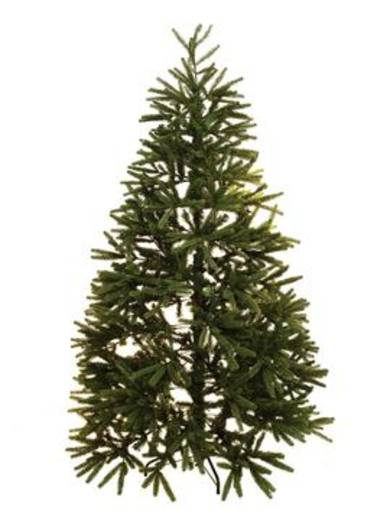 Weihnachtsbaum Tanne 230 cm Europalms 83500227 Grün