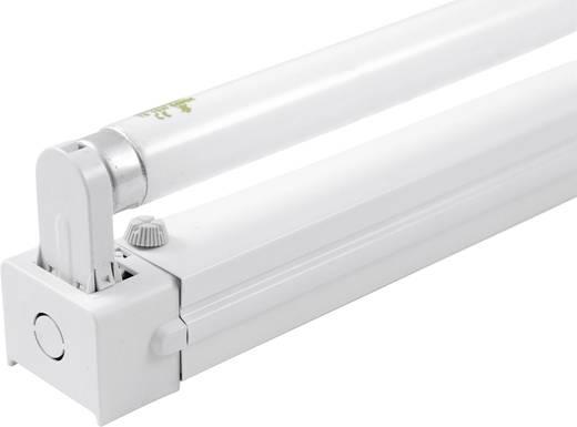 EUROLITE Fassung mit Leuchtstoffröhre 45cm 15 W