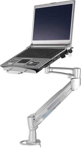 Notebook-Ständer NewStar Products NOTEBOOK-D200 neigbar, höhenverstellbar