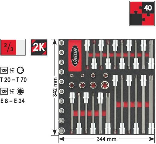 """Innen-TORX Steckschlüssel-Bit-Einsatz-Set 40teilig 1/2"""" (12.5 mm) Vigor V2033"""