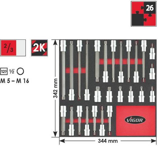 """Innen-Vielzahn (XZN) Steckschlüssel-Bit-Einsatz-Set 26teilig 1/2"""" (12.5 mm) Vigor V2032"""