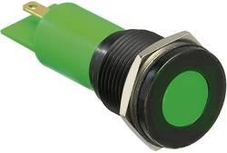 Voyant de signalisation LED APEM Q16F1BXXW220E blanc 230 V/AC 1 pc(s)