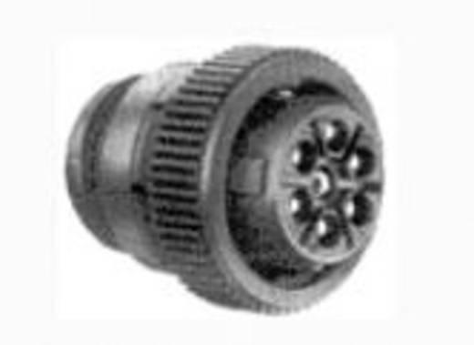 CPC Stiftgehäuse mit Überwurfmutter Pole: 19 211770-2 TE Connectivity 1 St.