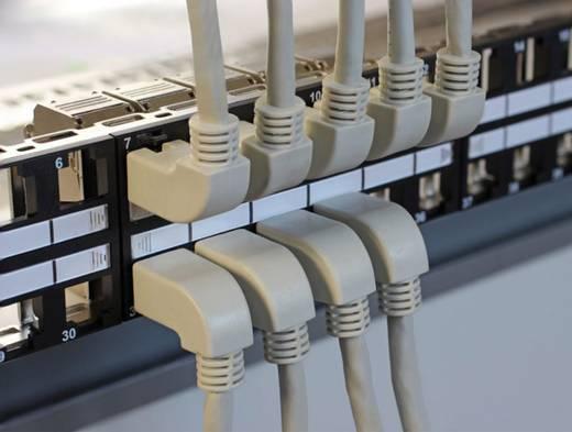 RJ45 Netzwerk Anschlusskabel CAT 6 S/FTP 0.5 m Grau Delock