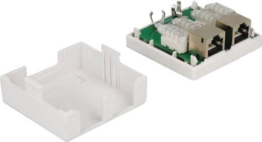 Netzwerkdose Unterputz Einsatz mit Zentralplatte und Rahmen CAT 6 2 Port Delock 86269 Weiß
