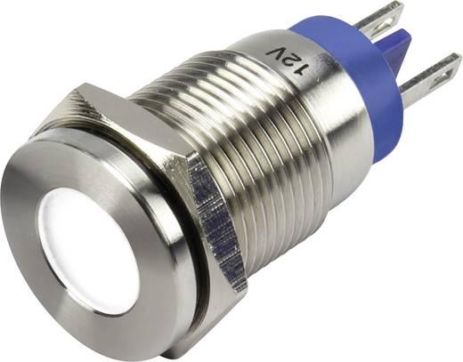 LED-Signalleuchte Weiß 12 V/DC TRU COMPONENTS GQ16F-D/J/W/12V/S
