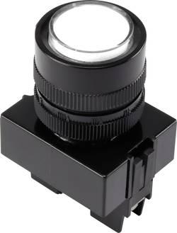 Voyant de signalisation LED TRU COMPONENTS 1302161 blanc 12 V/DC 1 pc(s)