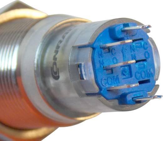 Druckschalter 48 V/DC 2 A 1 x Ein/Ein TRU COMPONENTS LAS2GQF-11ZET/R/12V/S/P IP65 rastend 1 St.