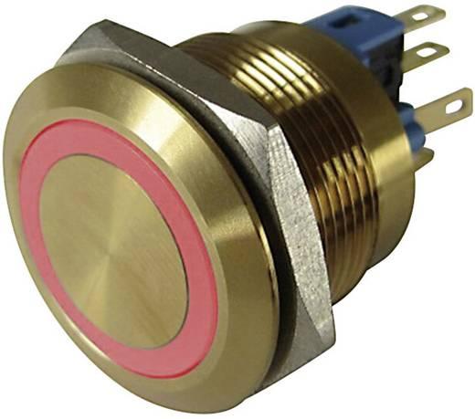 Vandalismusgeschützter Drucktaster 250 V/AC 3 A 1 x Aus/(Ein) TRU COMPONENTS GQ22-11E/R/12V/G IP65 tastend 1 St.