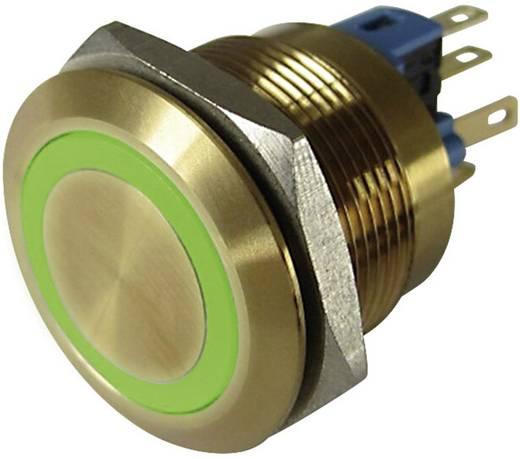 Vandalismusgeschützter Drucktaster 250 V/AC 3 A 1 x Aus/(Ein) TRU COMPONENTS GQ22-11E/G/12V/G IP65 tastend 1 St.