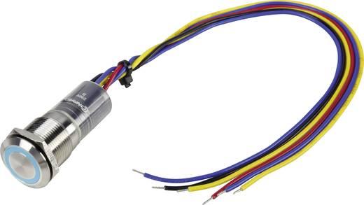 Vandalismusgeschützter Drucktaster 250 V/AC 5 A 1 x Aus/(Ein) TRU COMPONENTS LAS1-GQ-11E/B/230V/IP67 IP67 tastend 1 St.
