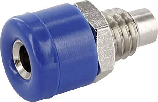 Laborbuchse Buchse, Einbau vertikal Stift-Ø: 2.6 mm Blau econ connect HOBBL 1 St.