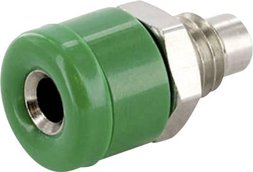Laborbuchse Buchse, Einbau vertikal Stift-Ø: 2.6 mm Grün econ connect HOBGN 1 St.