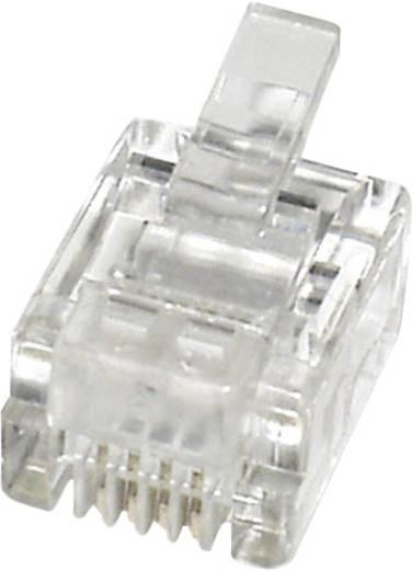 Modular-Stecker Stecker, gerade MPL64R Klar econ connect MPL64R 1 St.