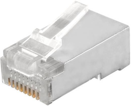 Modular-Stecker Stecker, gerade MPL8/8RG econ connect MPL8/8RG 1 St.