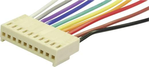 econ connect PS4 Steckbuchse mit Litze Polzahl Gesamt 4 Rastermaß: 2.54 mm 1 St.