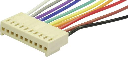Steckbuchse mit Litze Polzahl Gesamt 20 econ connect PS20 Rastermaß: 2.54 mm 1 St.