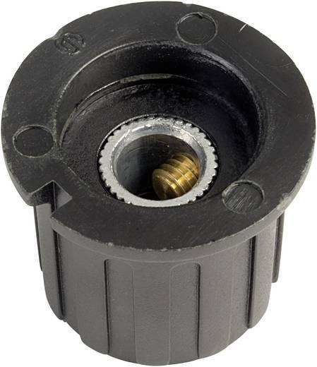 Drehknopf mit Zeiger Schwarz (Ø x H) 23.3 mm x 20 mm SCI PN-38B (6.4mm) 1 St.