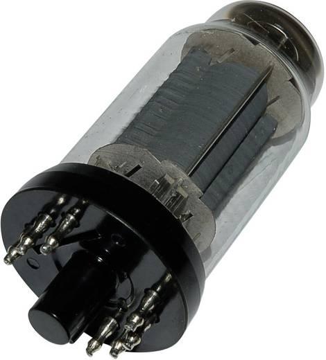 Elektronenröhre EL 12 N Endpentode 250 V 72 mA Polzahl: 8 Sockel: Y8A Inhalt 1 St.