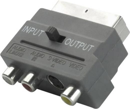 scart adapter 1x scart stecker 3x cinch stecker din stecker schwarz mit umschalter vivanco. Black Bedroom Furniture Sets. Home Design Ideas