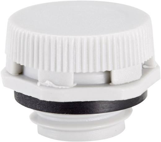 Druckausgleichselement M12 Polyamid Licht-Grau (RAL 7035) LappKabel SKINDICHT VENT UL 12x1,5 LGY plus 1 St.