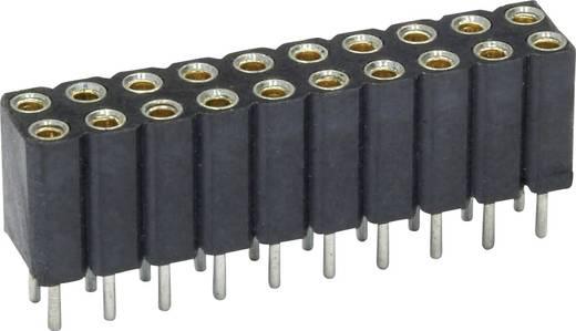 Buchsenleiste (Präzision) Anzahl Reihen: 2 Polzahl je Reihe: 20 econ connect MP70D40 1 St.