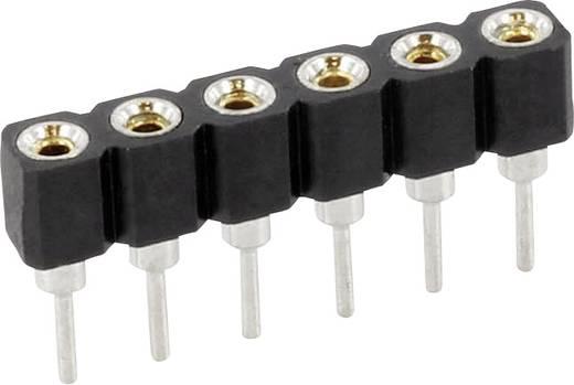 econ connect Buchsenleiste (Präzision) Anzahl Reihen: 1 Polzahl je Reihe: 32 SCS32AA3 1 St.