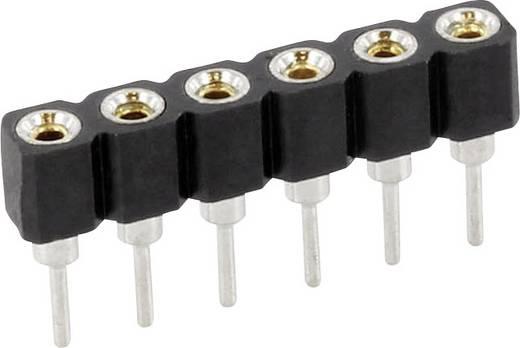 econ connect Buchsenleiste (Präzision) Anzahl Reihen: 1 Polzahl je Reihe: 40 SCS40AA3 1 St.