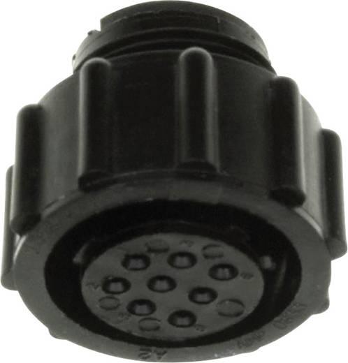 CPC Buchsengehäuse freihängend Pole: 28 206038-2 TE Connectivity 1 St.