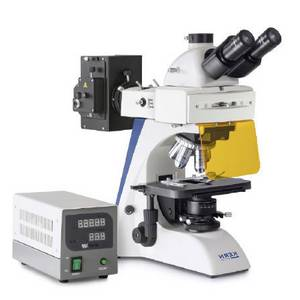 Durchlichtmikroskop Trinokular