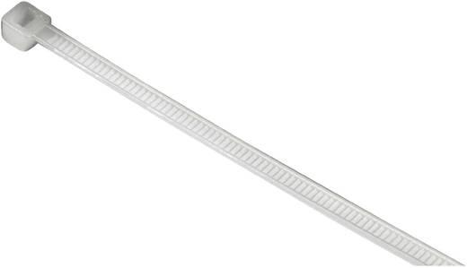 hama kabelbinder selbstsichernd l x b 20 cm x cm 50 st natur 00020557. Black Bedroom Furniture Sets. Home Design Ideas
