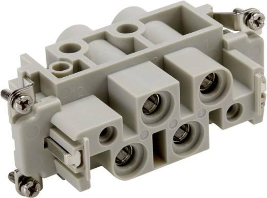 Buchseneinsatz EPIC® Power K 4/0 44424042 LappKabel Gesamtpolzahl 4 + PE 10 St.
