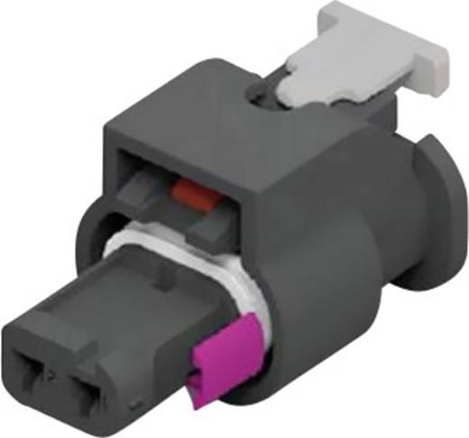 TE Connectivity Buchsengehäuse-Kabel MCON 1.2 Polzahl Gesamt 2 1-1718643-1 1 St.
