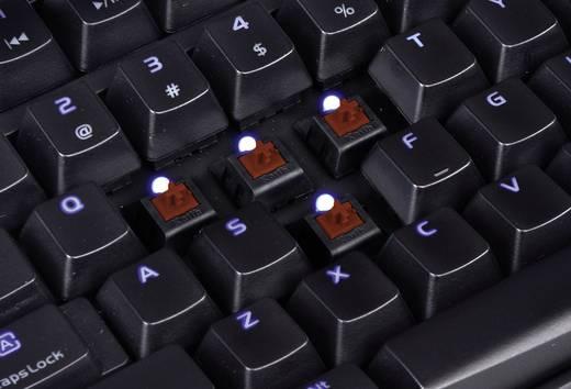 USB-Gaming-Tastatur TT eSports Poseidon Z Illuminated Switch: Brown, Beleuchtet Schwarz/Blau