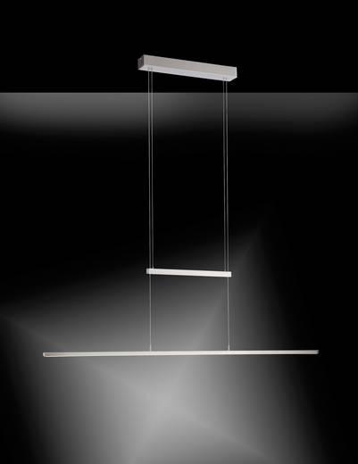 led pendelleuchte 20 w warm wei paul neuhaus inigo 2208 55 stahl kaufen. Black Bedroom Furniture Sets. Home Design Ideas
