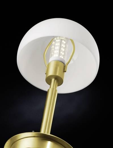 Tischlampe LED GU10 4 W Paul Neuhaus Verona 4077-60 Messing (matt)