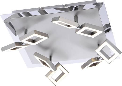 LED-Deckenleuchte 20 W Warm-Weiß Paul Neuhaus Twins 6700-55 Stahl