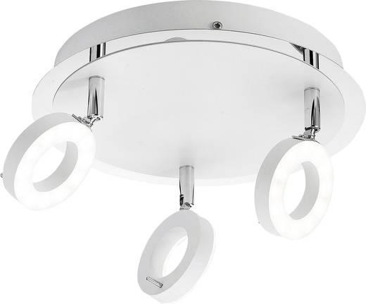 LED-Bad-Deckenleuchte 18 W Warm-Weiß Paul Neuhaus 6788-16 Sileda Weiß