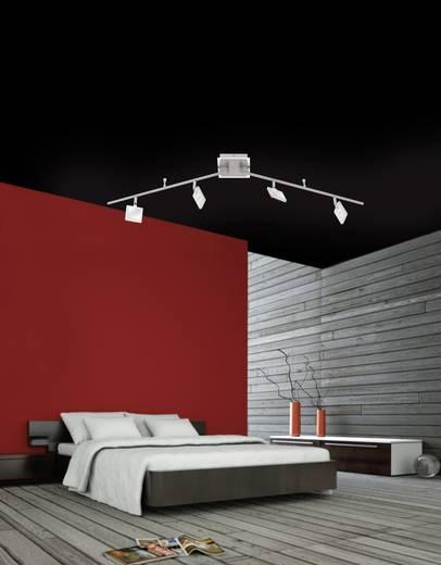LED-Deckenstrahler 16 W Warm-Weiß Paul Neuhaus Daan 6964-17 Chrom